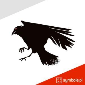 symbol kruk