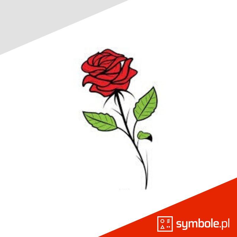 róża symbol