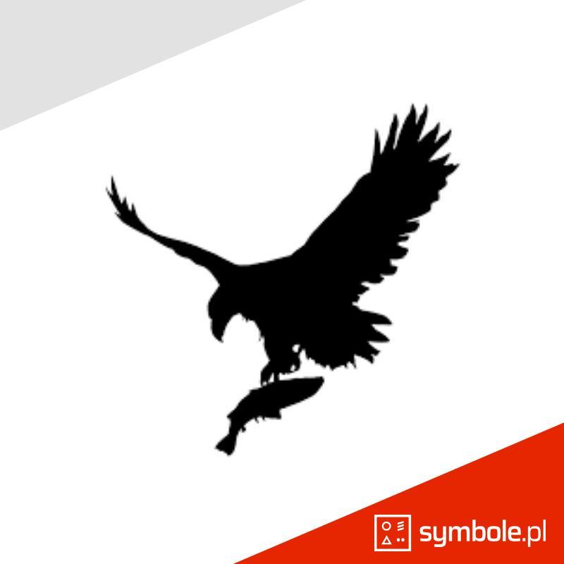 symbol orła